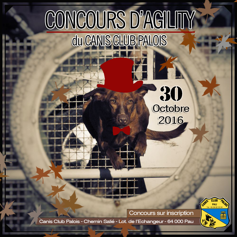 Affiche concours agility 2016rougefonce