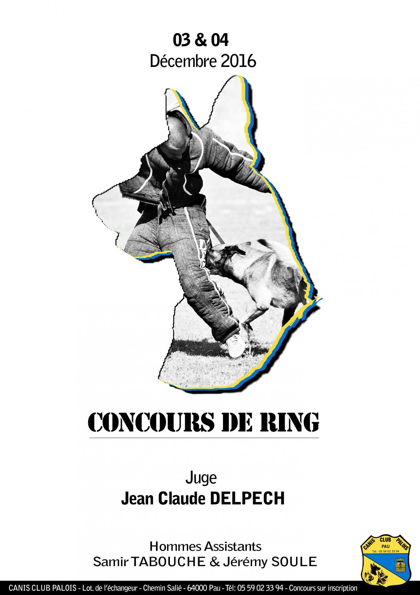 Affiche ring decembre 2016